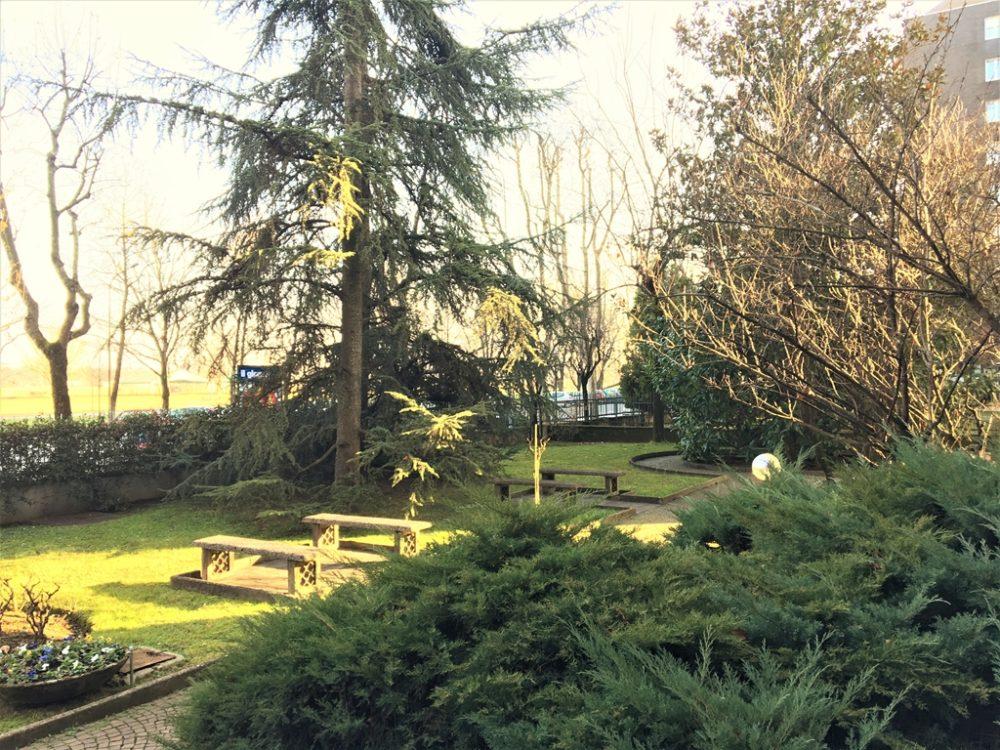 a313-giardino-condominiale2