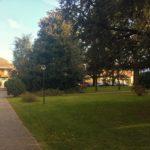 15-t304-giardino-condominiale2