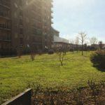 7-a328-giardino-condominiale