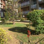 13-t308-giardino-condominiale