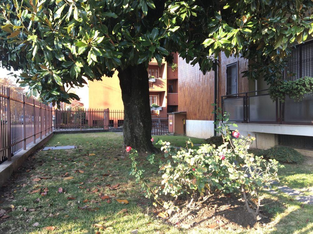 10-b330-giardino-condominiale2