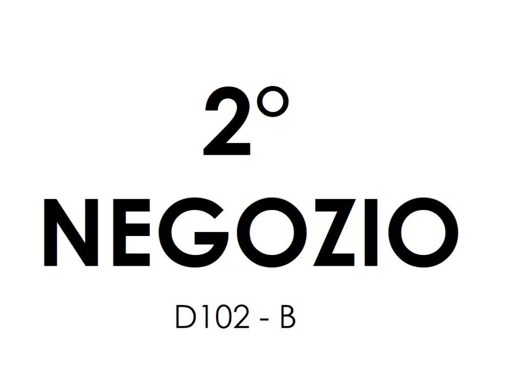 5-b-negozio-d102